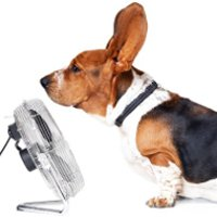 Prevent Air Conditioning Breakdowns